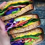 Most colourful Rainbow Sandwich