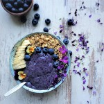 Psyllium Blueberry Pudding | lowfat